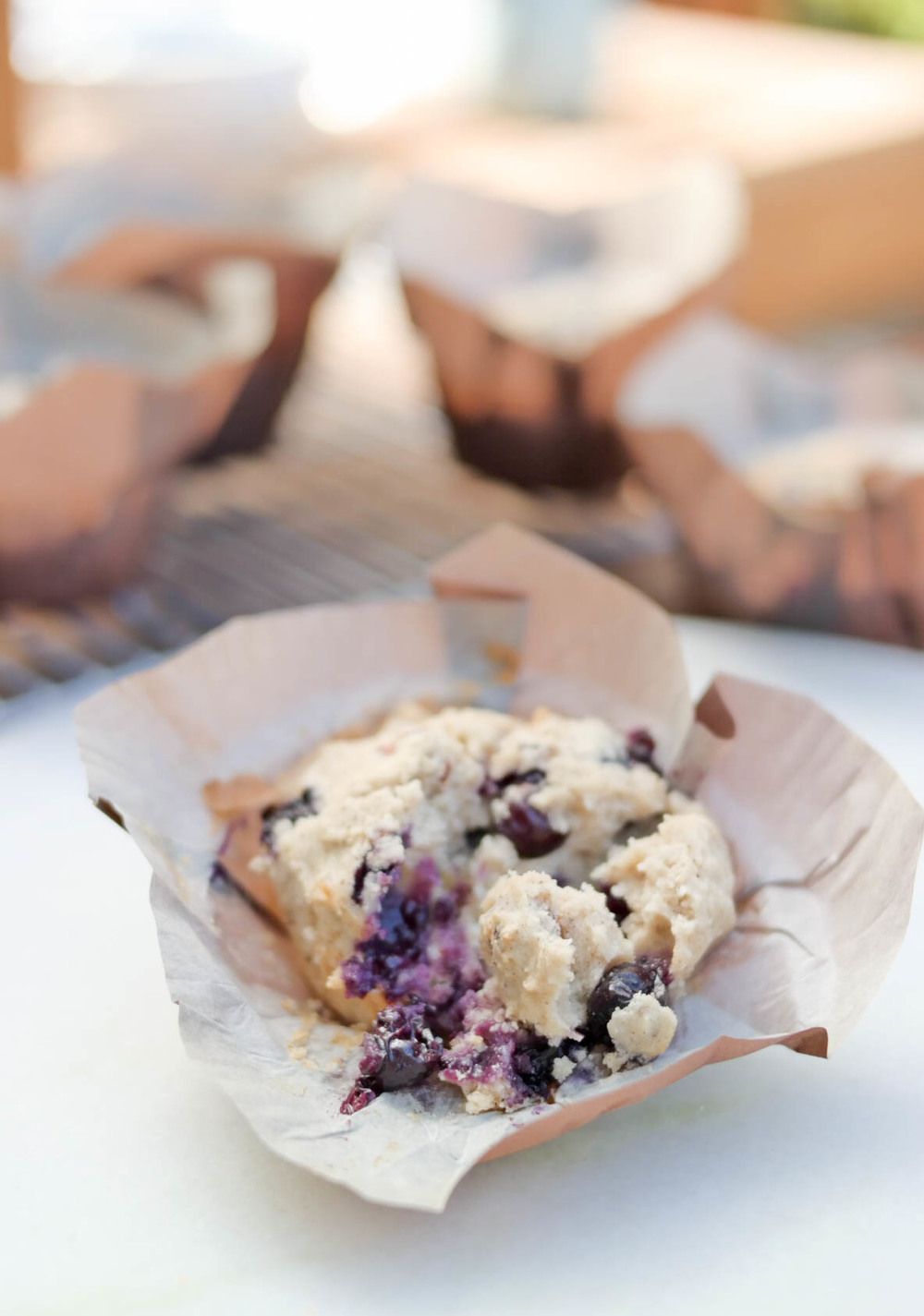 5-Blueberry-Coconut-Muffins | www.8thandlake.com