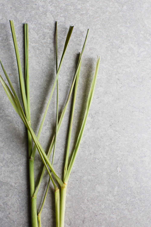 5-Thai-Style-Coconut-Soup -tom-kha | www.8thandlake.com