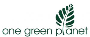 OGP-logo-300x124.png
