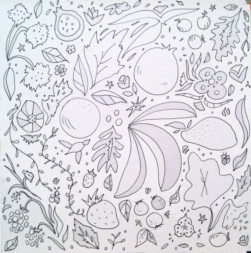 line drawn fruits_allyn_Howard.jpg