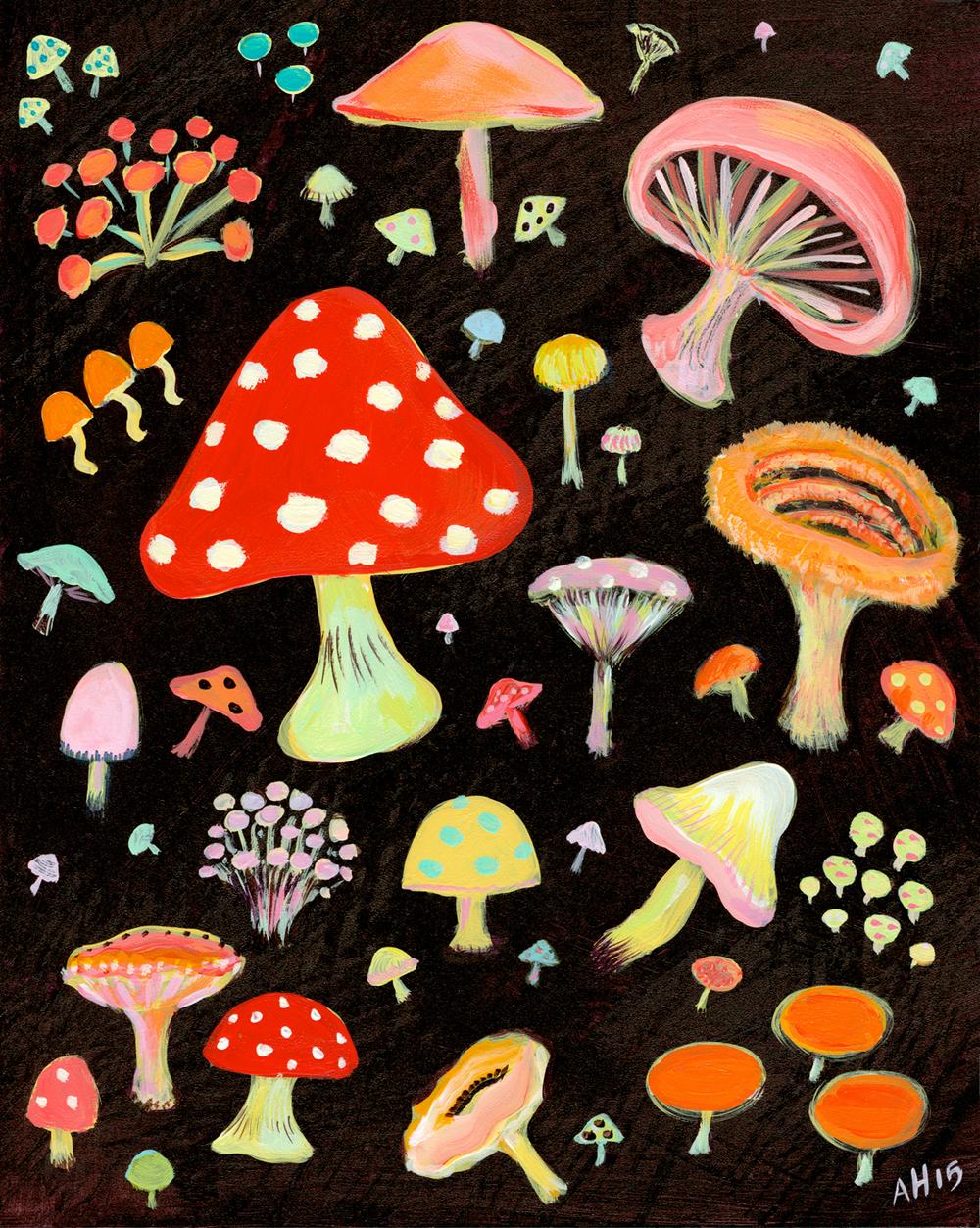 Allyn_Howard_Mushrooms.jpg