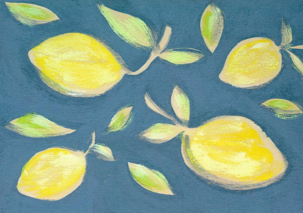 Allyn_Howard_SM_lemons_navy.jpg