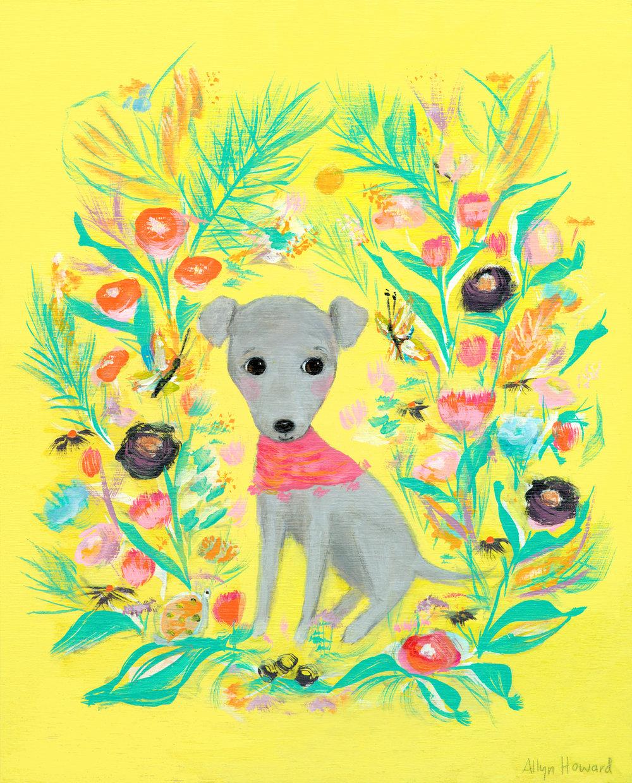 Allyn_Howard_Dog-greyhound-pup.jpg
