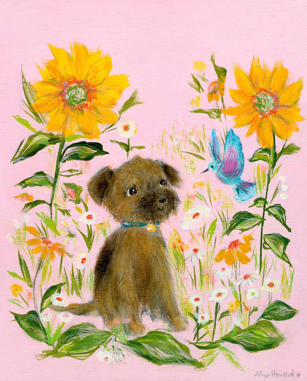 Allyn_Howard_Dog-mixed-breed_pup.jpg