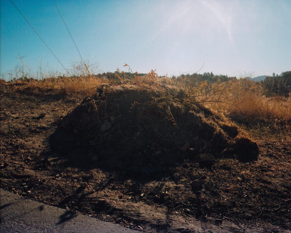 alangastelum-70.jpg