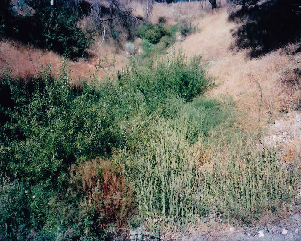 alangastelum-71.jpg