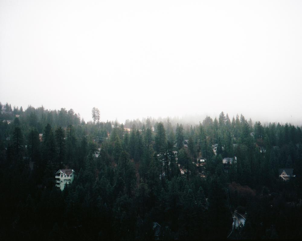 alangastelum-85.jpg