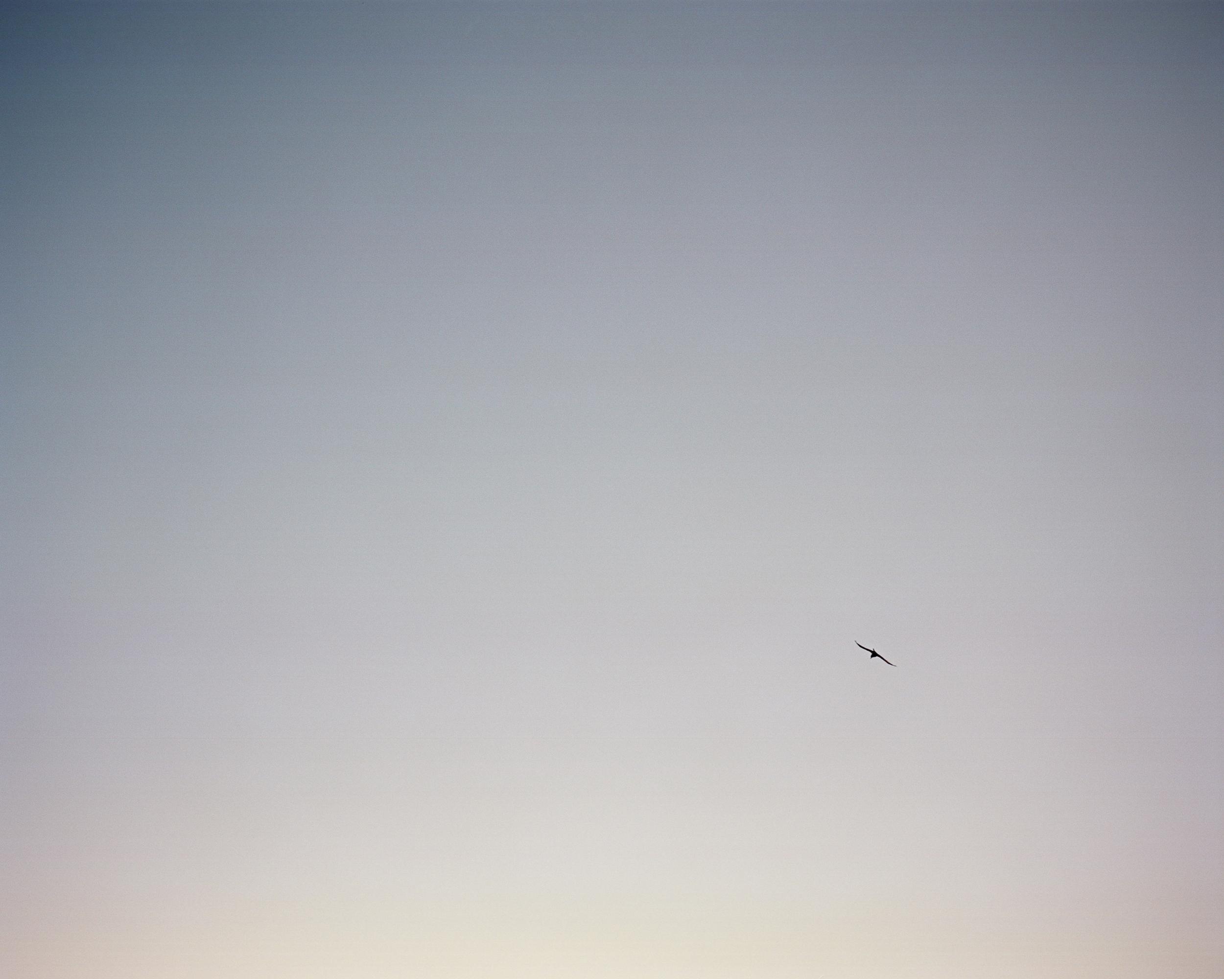 alangastelum-110.jpg