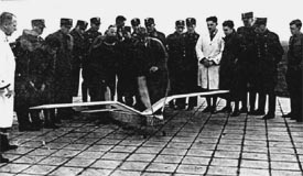Lippisch engine-powered, unmanned ornithopter, 1940s