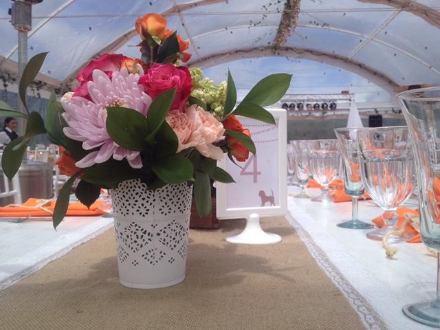 flores primaverales aidu .JPG