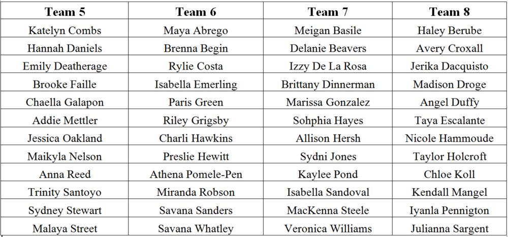 2016 Teams 5.8.PNG