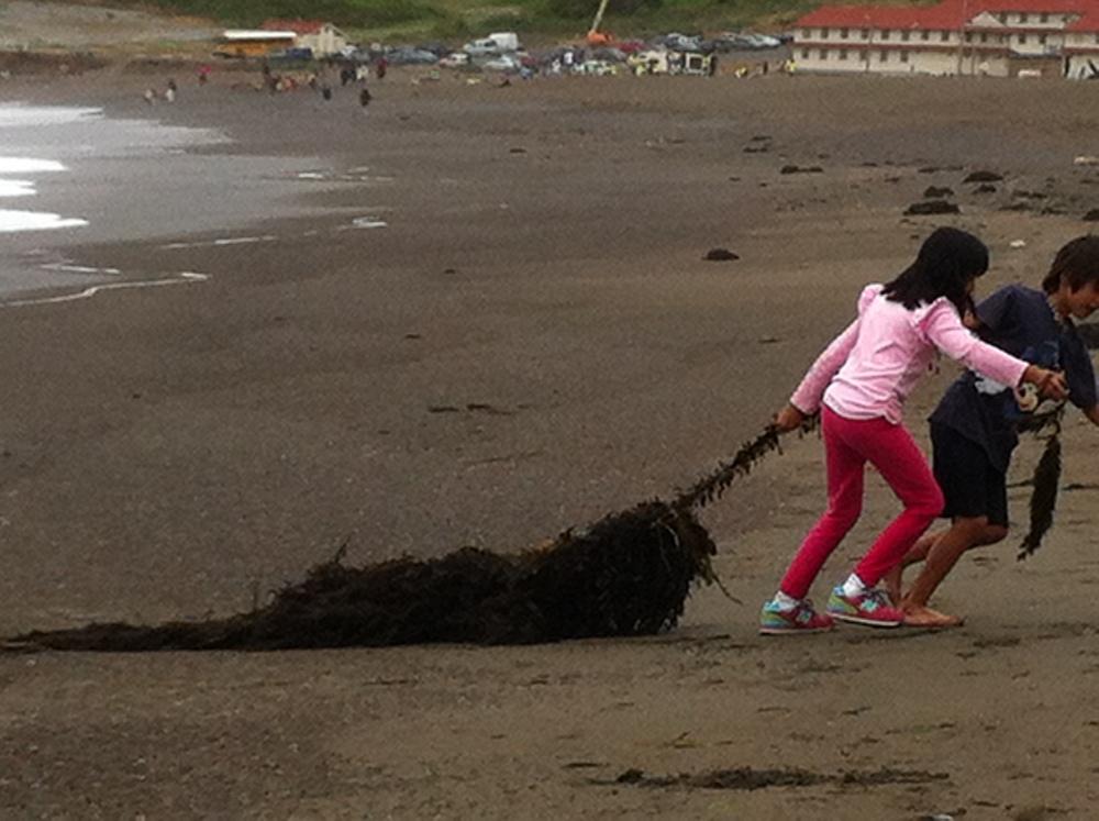 Kids_beach.JPG