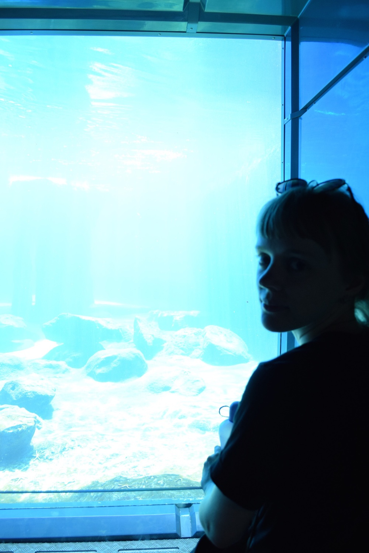 Little Sister, Sydney Aquarium, Australia