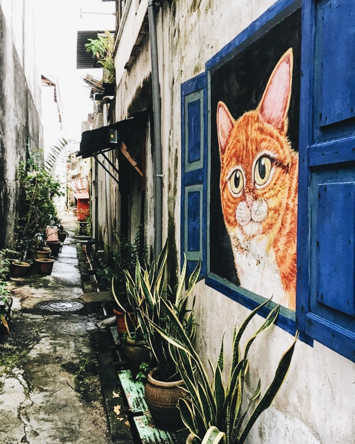 Wander: Street Art Penang Ginger Tom