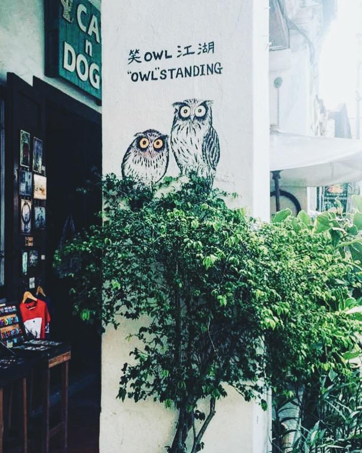 Wander: Street Art Penang Owl Graffiti