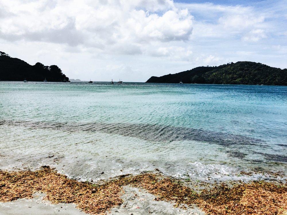 Golden Bay NZ.JPG