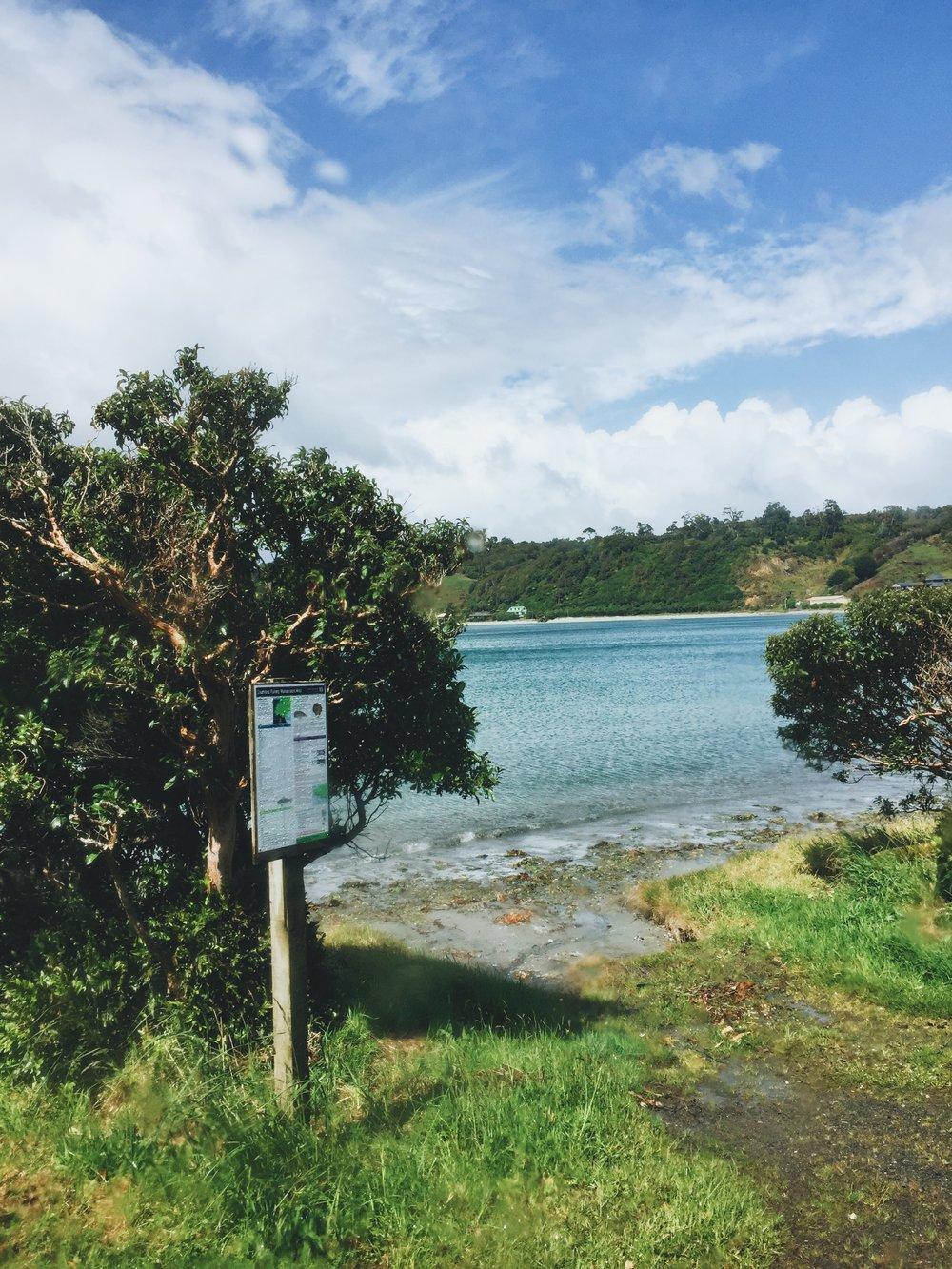 NZ beach.JPG