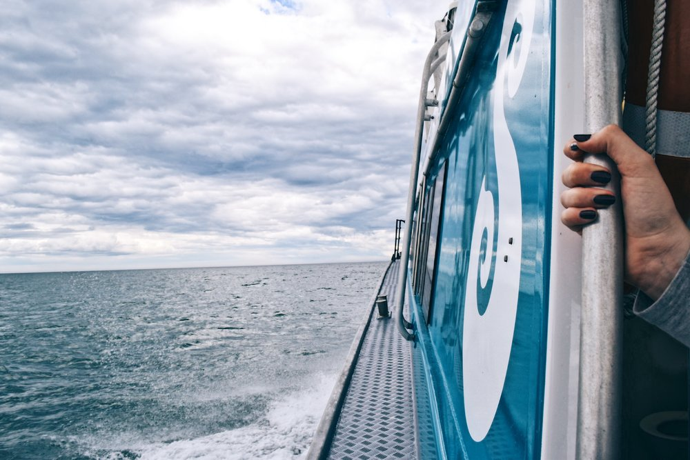 Stewart Island experience.JPG