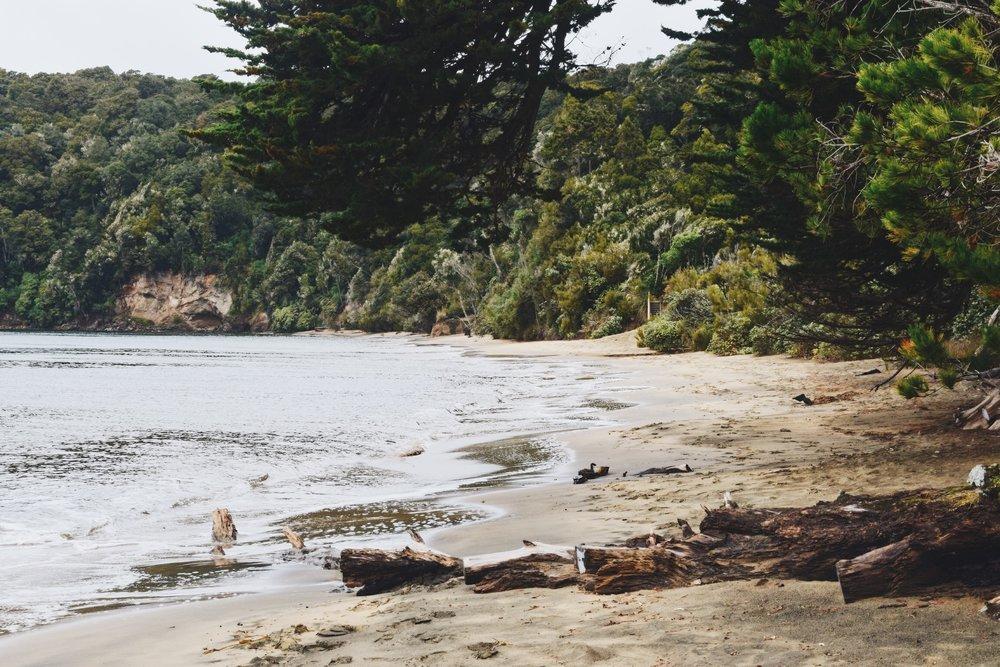 Sydney Cove .JPG
