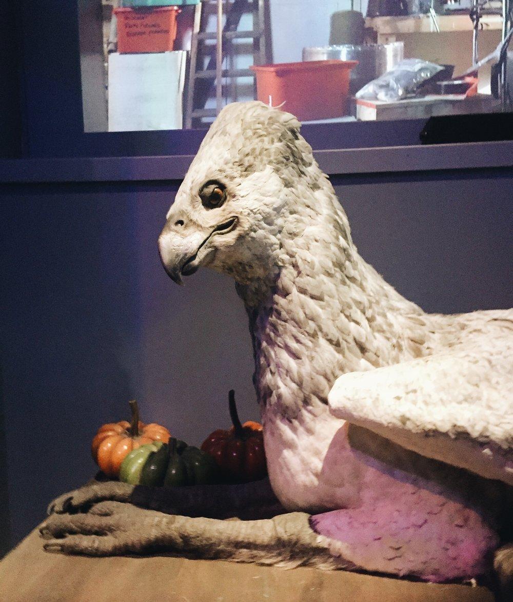 Buckbeak!