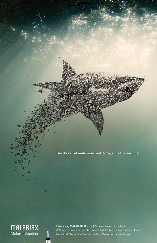 mosquito-shark-white.jpg