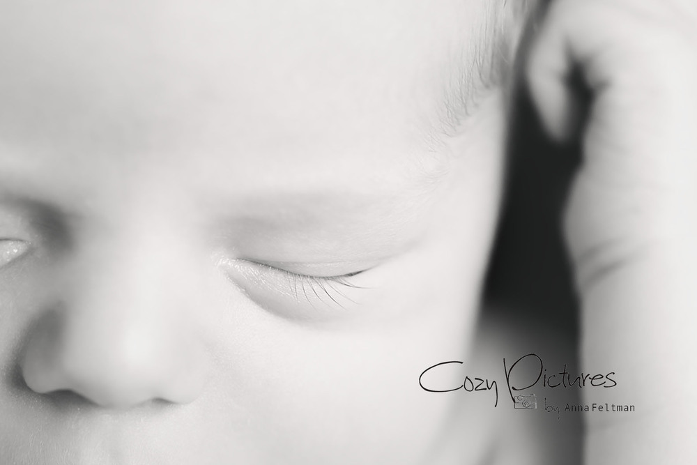Orlando Newborn Photographer_7.jpg