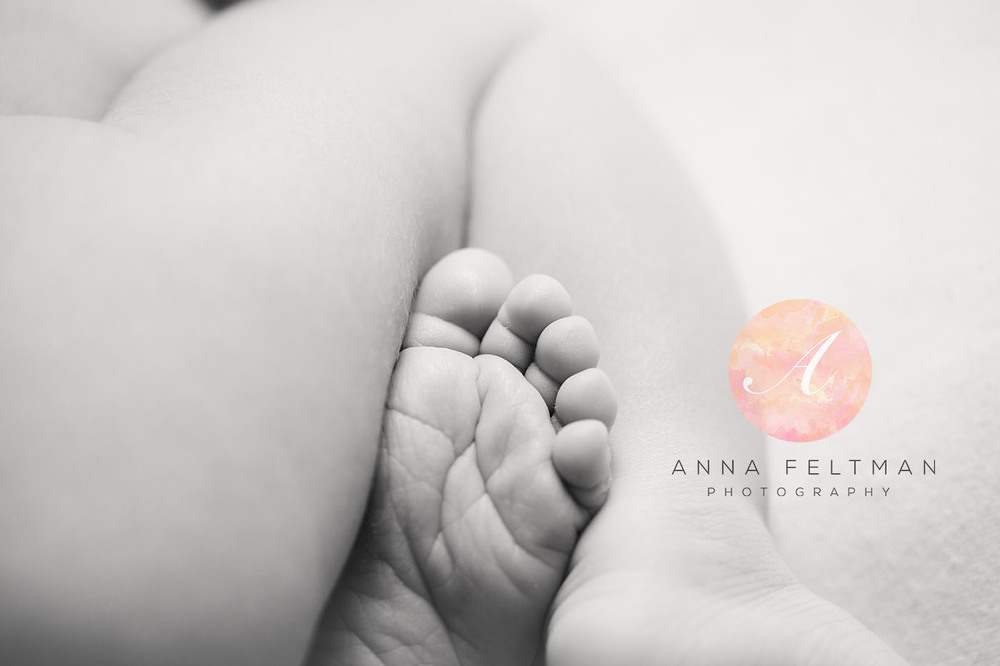 Newborn and Baby Photographer Winter Park.jpg