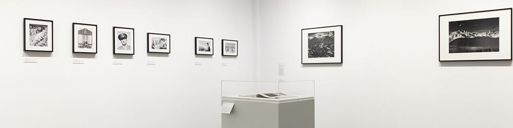 Curatorial Tour
