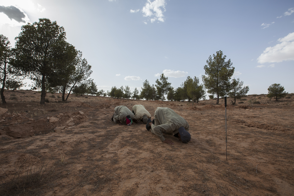 MiladSaadi and his team of de-miners pray before going to work clearing T-AB-1 anti-personnel mines left by Gaddafi's forces. The probe used to search the ground for mines can be seen in the foreground. Gawalish, Libya. July 18, 2011.