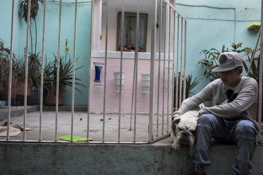 Fifteen year-old Pancho, an aspiring boxer from Morelos, sits with his one year old bulldog Shakira in front of his home on February 28, 2017 in the Morelos neighborhood of Mexico City. Pancho lives in a particularly rough neighborhood and local drug dealers use his apartment complex as a base of operations, with lines of drug users forming out front.