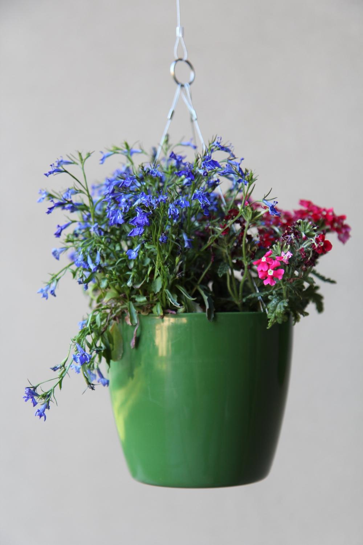 green flower singe 3.jpg