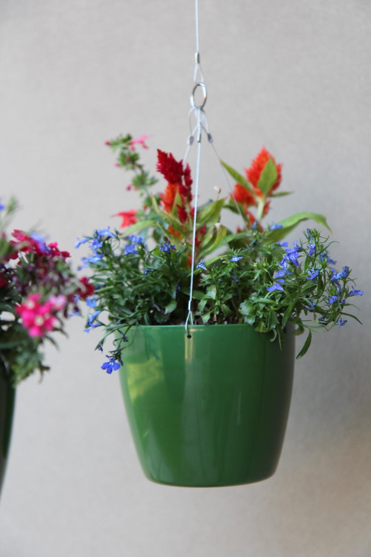 green flower singe 4.jpg