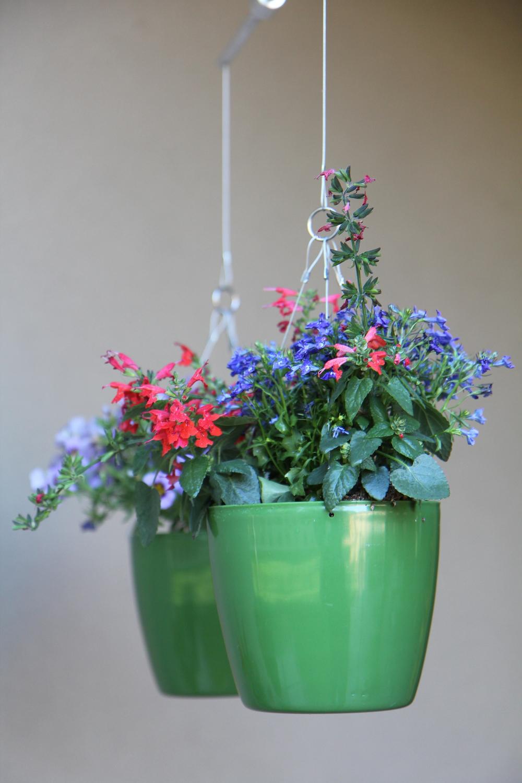 green flower singe 2.jpg
