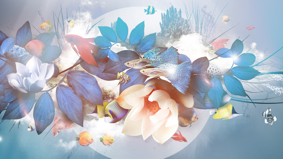 art-direction-branding-logo-print-neobleu-flowers.jpg