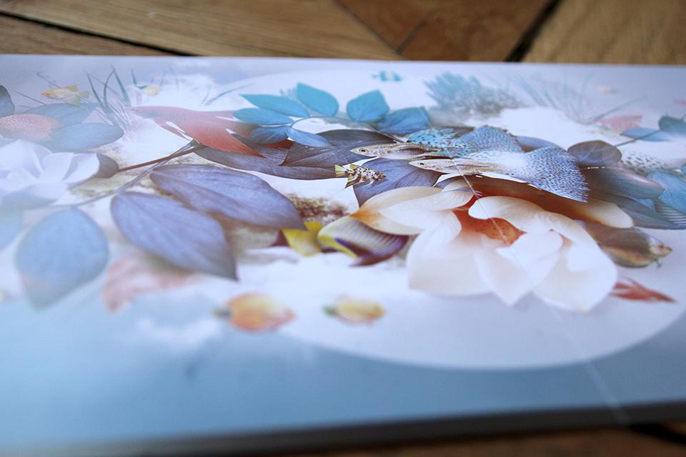 art-direction-branding-logo-print-neobleu-brochure-details.jpg