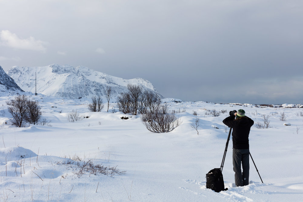 The arctic light and Lofoten is attractive to photographers from around, like Emile Holba @emileholbaphoto from London.