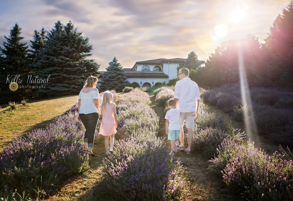 Hamilton Lavender Farm Photo Ideas.jpeg