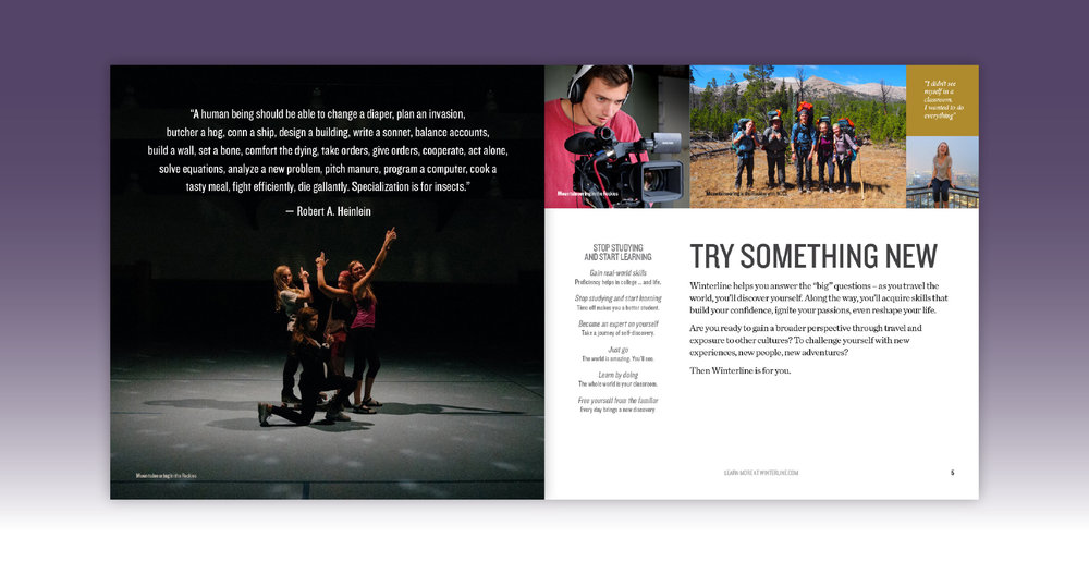 Winterline marketing brochure