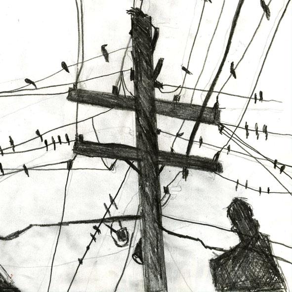Birds window vinyl