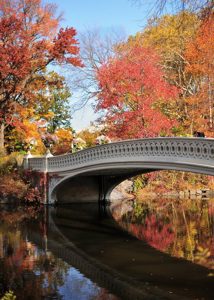 WATERWAYS OF NY -