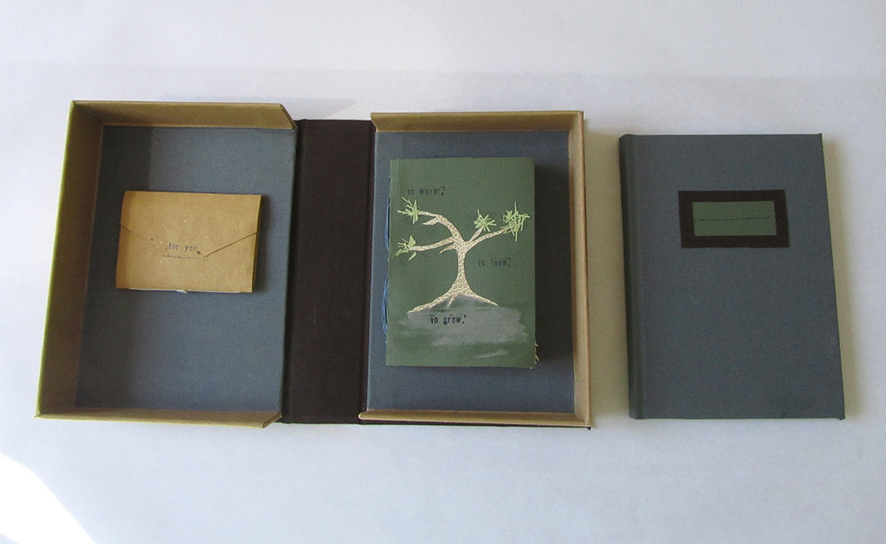 Drop-spine box with case, pamphlet, and long stitch bindings.