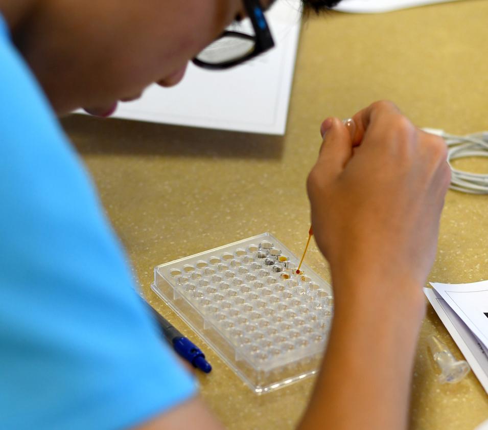 ELISA Training using a Microplate