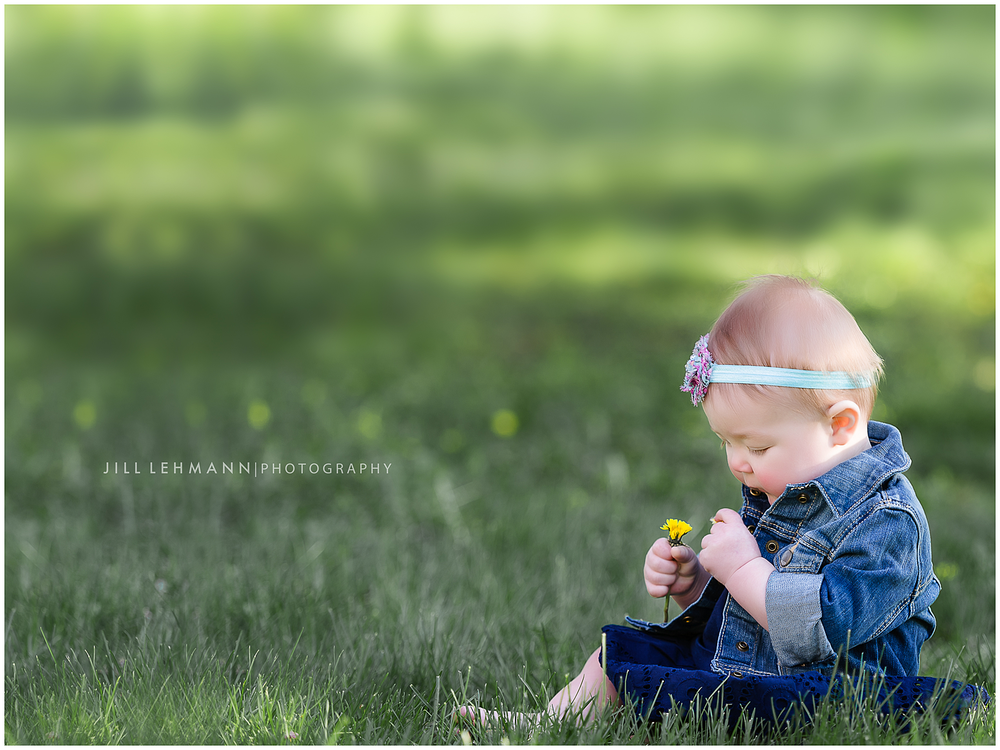 Baby / Family Photography - Jill Lehmann Photography - Des Moines, IA
