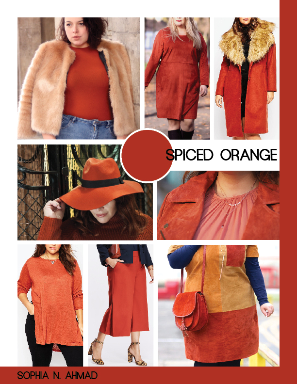 SPICED ORANGE PLUS SIZE COLOR REPORT SOPHIA N. AHMAD