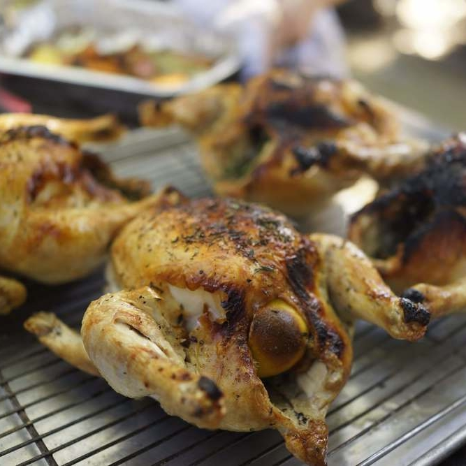 Roasted Chicken -