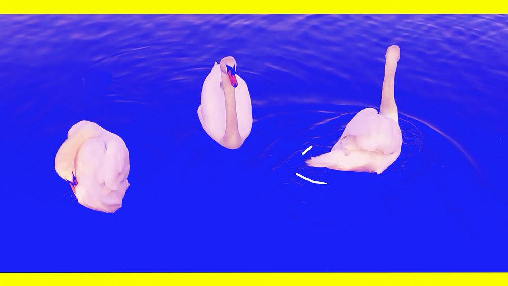 Ducks_screenshot_5.jpg
