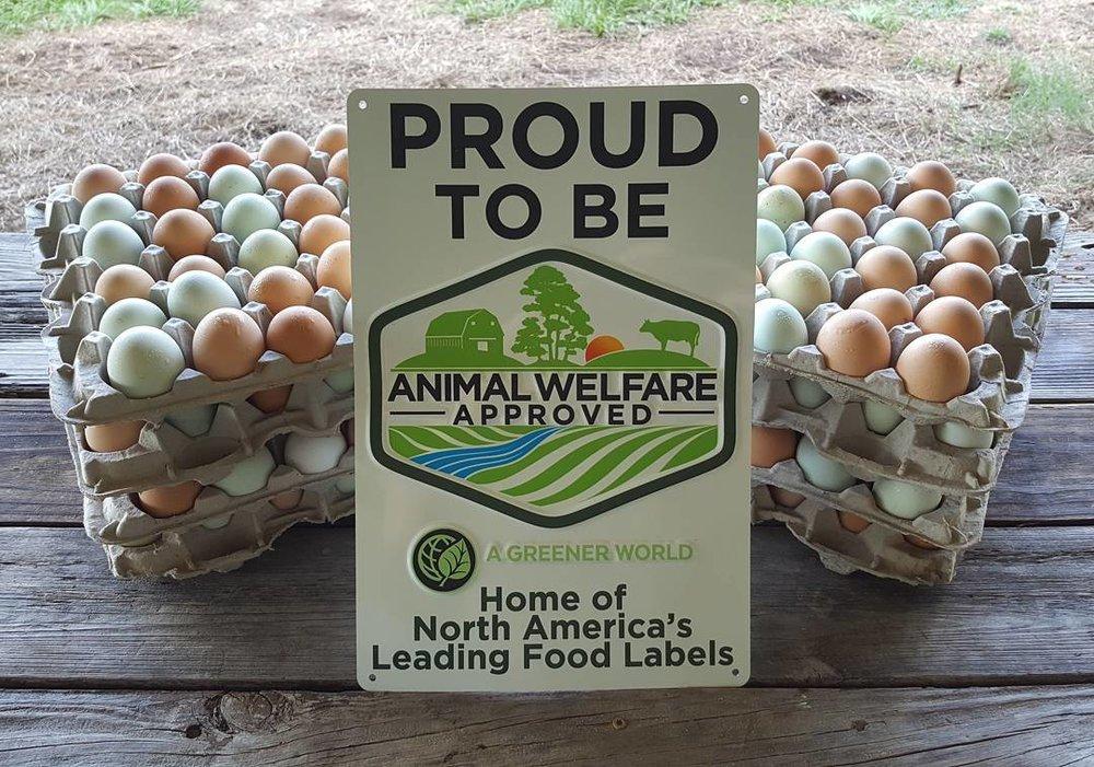 Egg Csa Swallowtail Farm