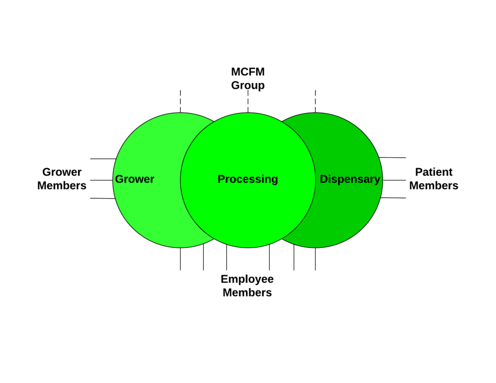 The Collective has interlocking parts but all are owned by the grower members. MCFM Group provides professional management for the collective.