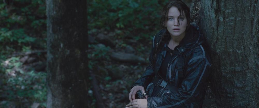 Katniss-Everdeen-in-The-Hunger-Games-katniss-everdeen-33096676-1920-800.jpg