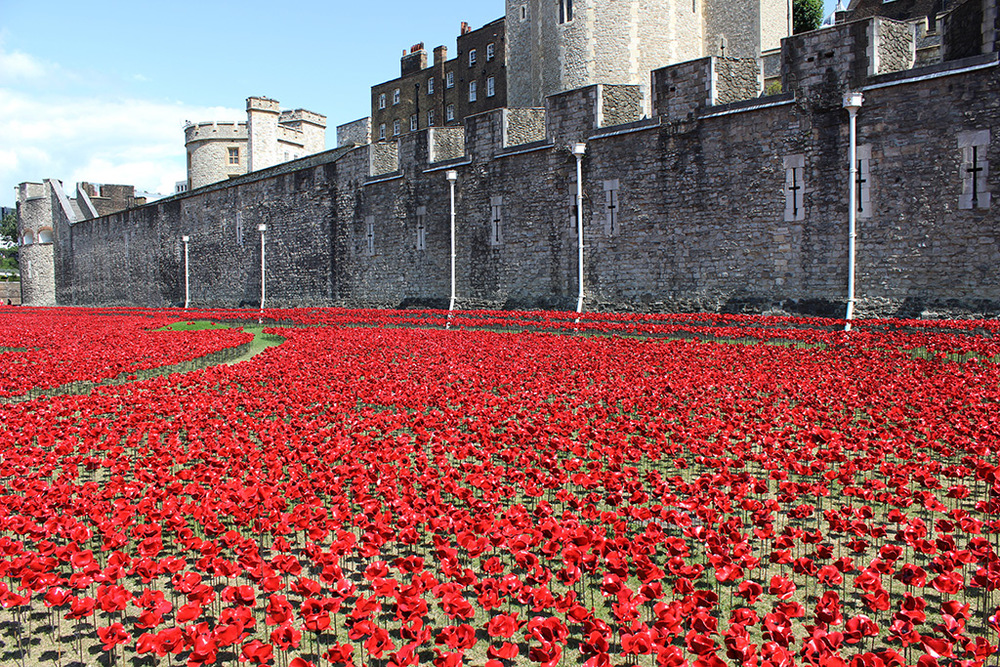 Image courtesy of Colossal's  888,246 Ceramic Poppies Surround the Tower of London to Commemorate WWI